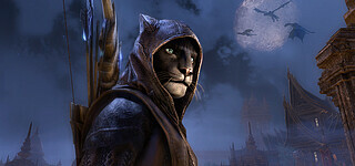 The Elder Scrolls Online startet tolle Charity-Aktion