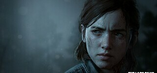 The Last of Us: Part 2 ohne Multiplayer?