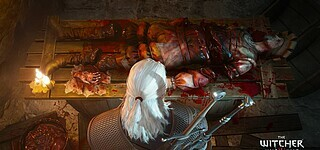 The Witcher war als Trilogie designt